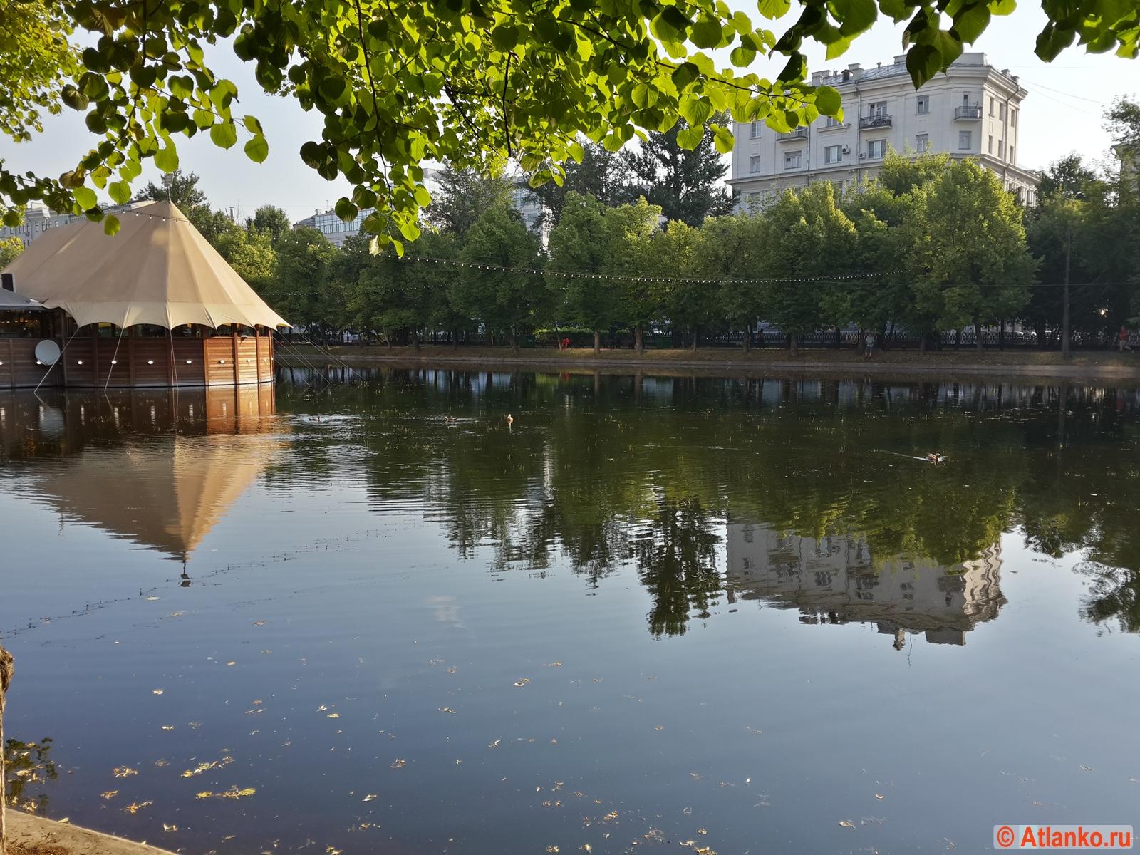 Чистые пруды, летнее утро. Москва. Фотография