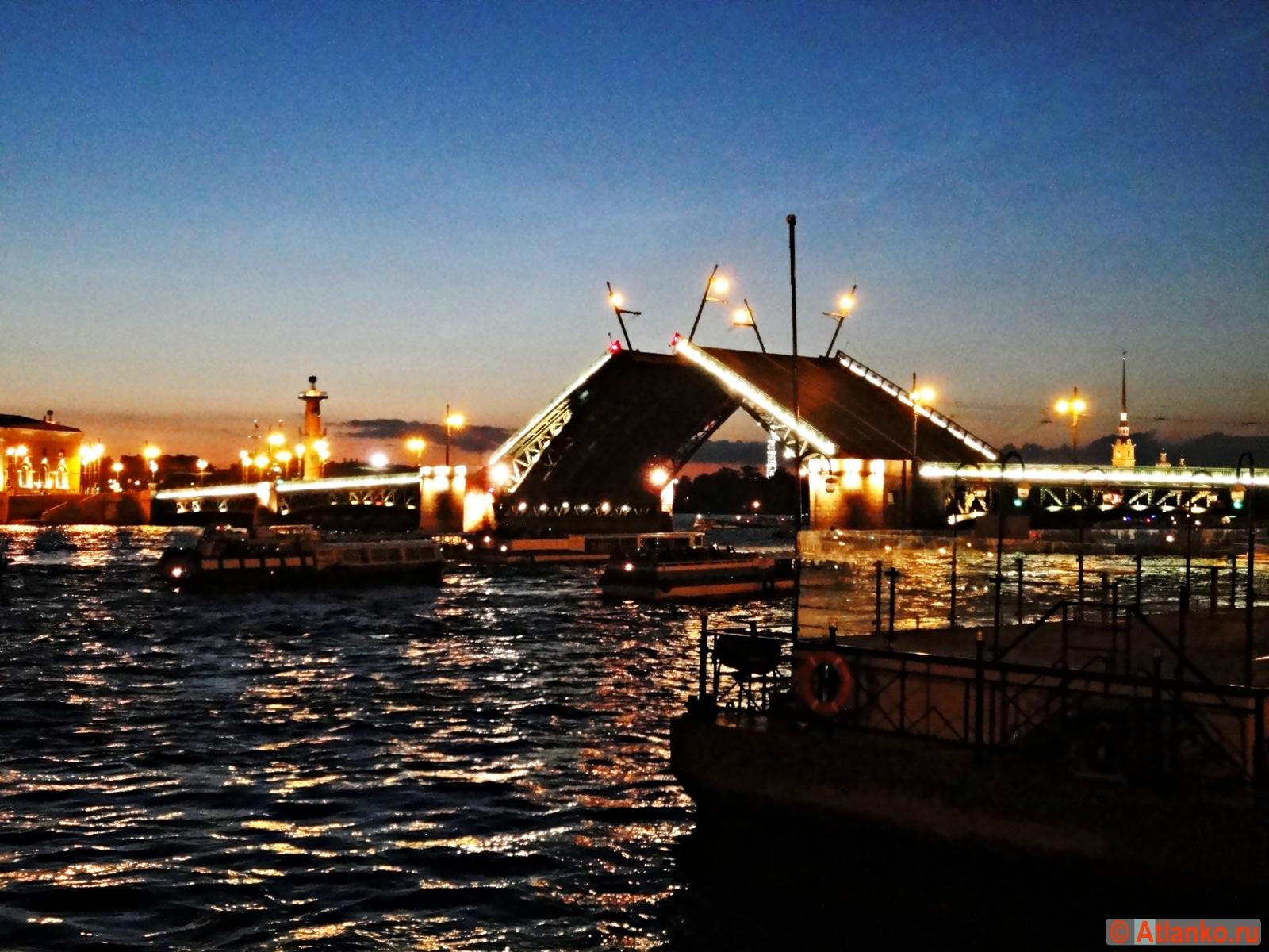 Дворцовый мост - разводной мост через Большую Неву, один из символов Северной столицы России. Развод моста ночью. Санкт-Петербург. Фотография